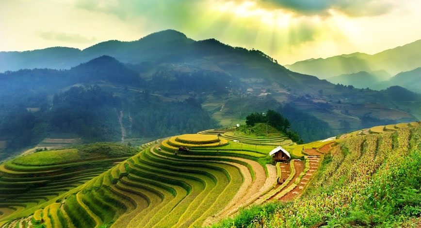 Terrace Fields in Sapa