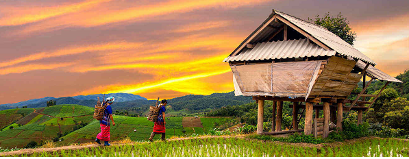 The Interesting Countryside Life throughout Vietnam